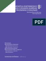Bio Filogenia Top08