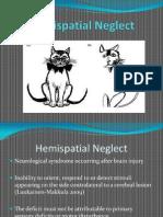 Hemispatial Neglect LDH