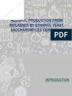 Alcohol Production From Molasses by Ethanol Yeast (1)