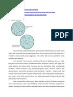 Apklin Pk Analisis Sperma