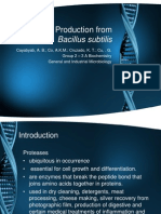 Protease Production From Bacillus Subtilis