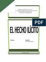Hecho Ilicito2