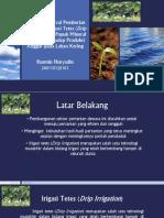 Pengaruh Interval Pemberian Air Melalui Irigasi Tetes (