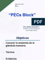 pec block ppt