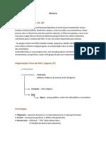 resumoparaoteste-131202141100-phpapp01.docx