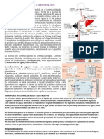 Transporte Intestinal de Agua y Electrolitos