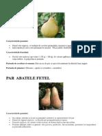 soiuri de par.pdf