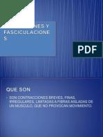 Fibrilaciones y Fasciculaciones