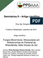 Apresentação I Seminários II 08-09-2014
