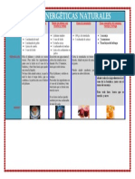 Bebidas energéticas naturales.pdf