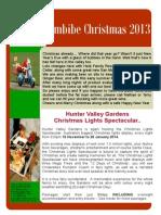 Christmas 2013 Newsletter