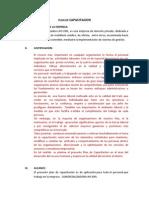 Plan de Capacitacion y Desarrollo de Recursos Humanos