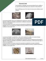 Estructura Lineal, Capas Lineales, Lineas Enlazadas y Antopometria