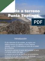 Pta Teatinos