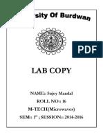 sujoy lab copy