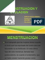 Menstruacion y Ovulacion
