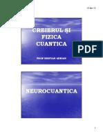 _neurocuantica