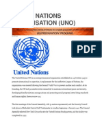 United Nations Organisation