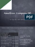 Amerbran Company (b) Solution