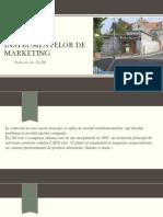 Analiza Instrumentelor de Marketing La Ely(Lotus de Aur)