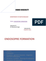 Endosopre Formation