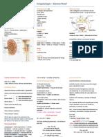 Resumo - Sistema Renal - Fisiopatologia