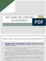 Recurso de Amparo Economico