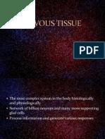 7.Nervous Tissue