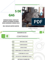 Hidratos de Gas Gpsa