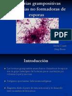Bacterias Grampositivas Anaerobias No Formadoras de Esporas [Autoguardado]