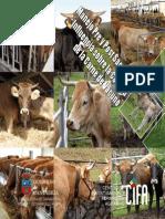 Manual Carne Baja Con Seguridad