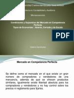 Condiciones y Supuestos Del Mercado en Competencia Perfecta