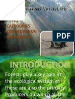 Geography Forest and Wildlife
