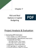 Lecture Capbud Risk