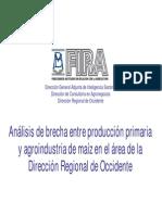 Produccion Primaria y Agroindustria Maiz