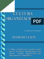 Sesion Xiii -Cultura Organizacional
