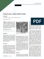 Perineal Canal Simple Repair1