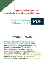 Rolul Ubicuitinei in semnalizarea giberelinei.pptx