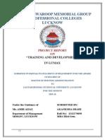 Training and Development in Lumax
