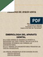 2. EMBRIOLOGIA