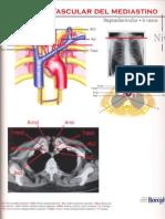 atlas anatomia torax.pdf