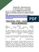 Información Doctrinaria y Jurisprudencial Del Derecho Procesal Civil