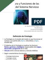 Estructura y Funciones de Las Células Del Sistema