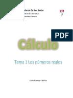 Tema 01 Los Numeros Reales