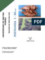 Guia de Practica Patologia I-2013-II