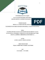 Elaboracion de Un Manual de Gestion de SYSO en La Empresa Mirrorteck