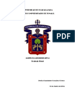 Auditoria Administrativa Trabajo Final (1)