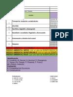 Matriz Mataderos- Analisis de Riesgo (1)
