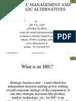 Strategic Management and Strategic Alternatives