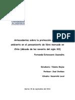 Antecedentes Sobre La Protección Al Medio Ambiente en El Pensamiento de Libre Mercado en Chile